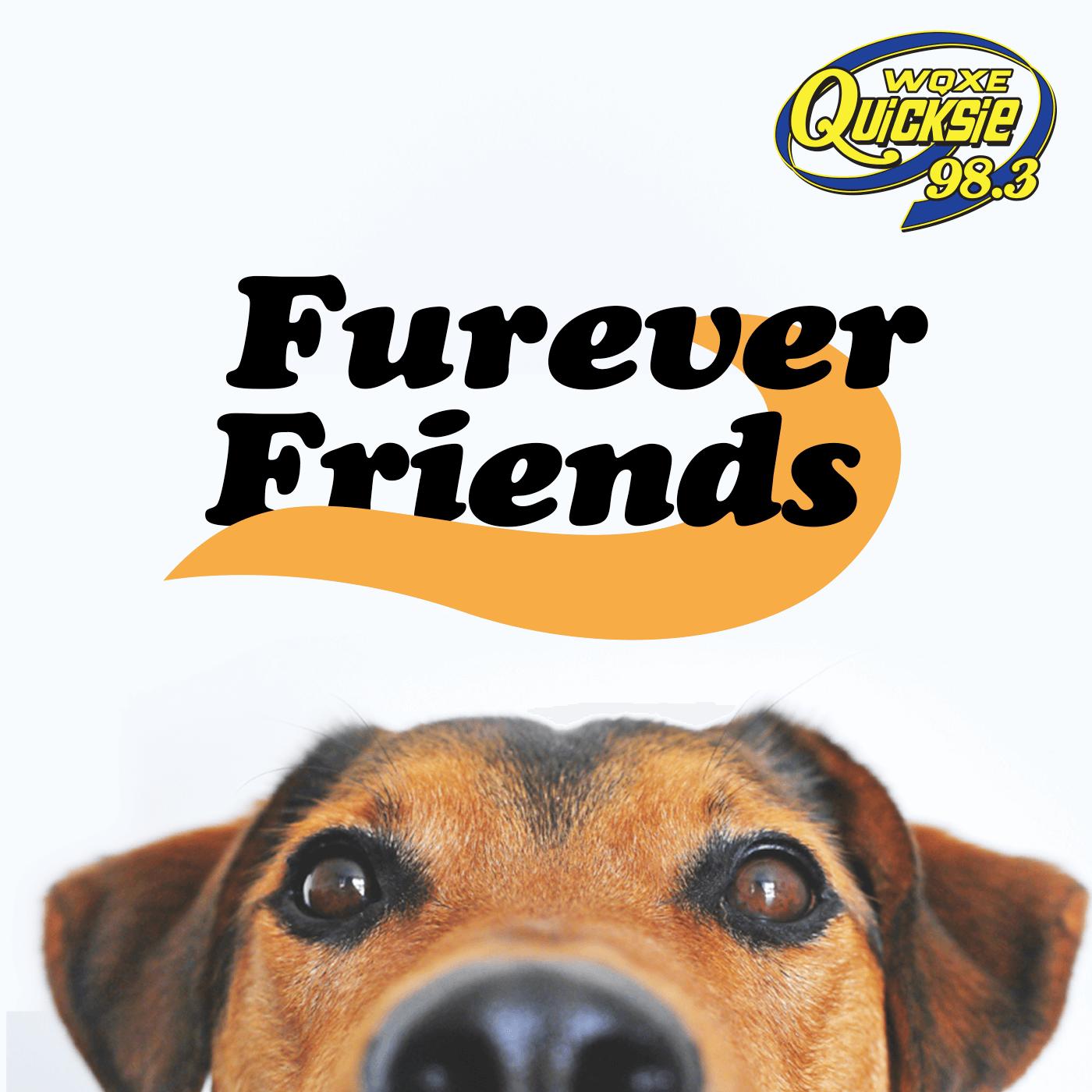 Furever Friends – Quicksie 98.3